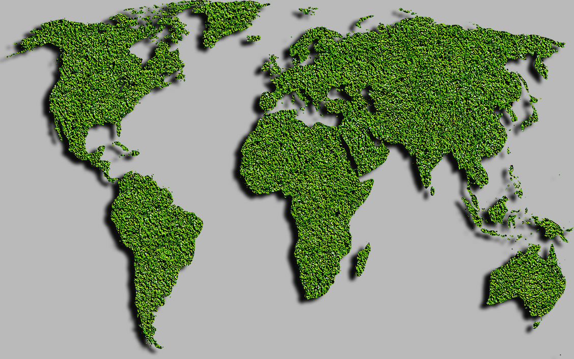 synthetic turf international artificial grass synthetic turf